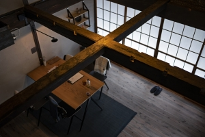 Nipponia-kosuge28mblog